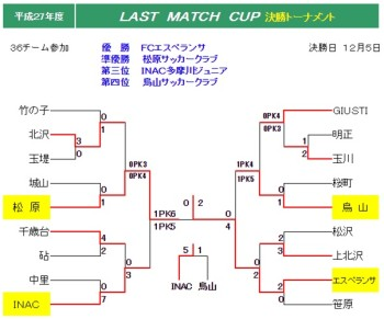 2015 LAST MATCH CUP